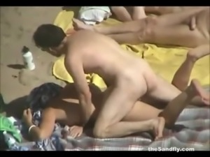 theSandfly - Public Beach Sex S ... free