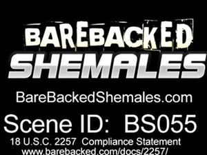 Sexy Shemale With Hard Dick Bareback