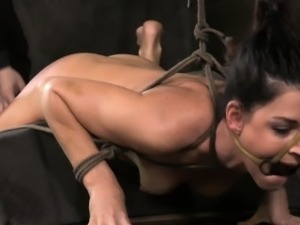 Hogtied milf punished roughly and hard